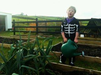 A bit of skeleton gardening